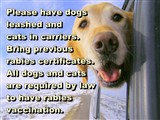 Please have dogs leashed and  cats in carriers.  Bring previous  rabies certificates.  All dogs and...